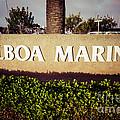 Balboa Marina Sign Newport Beach Picture by Paul Velgos