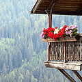 Balcony Overlooking The Forest by Matteo Colombo
