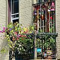 Balcony by Teena Bowers