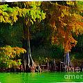 Bald Cypress 3 - Digital Effect by Debbie Portwood