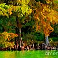Bald Cypress 4 - Digital Effect by Debbie Portwood