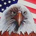 Bald Eagle by Bob Williams