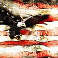 Bald Eagle Bursting Thru Flag by Eleanor Abramson