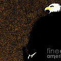 Bald Eagle In Repose by Ron  Tackett