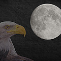 Bald Eagle With Full Moon - 3 by Chris Smith