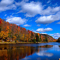 Bald Mountain Pond In Autumn by David Patterson