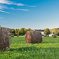 Bales 3d21646 by Guy Whiteley