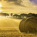 Bales In The Morning Mist by Veli Bariskan