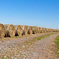 Bales Of Hay On An Old Farm Road by Bill Cannon