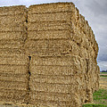 Bales Of Hay On Farmland by David Gn