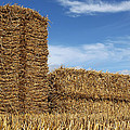 Bales Of Straw Against Blue Sky by Peter Zijlstra