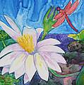 Bali Dragonfly by Patricia Beebe