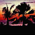 Bali Sunset Polaroid Transfer  by Steve Harrington