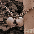 Ball And Chain Closure  by Luv Photography