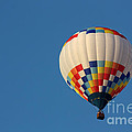Balloon-6954 by Gary Gingrich Galleries