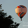 Balloon-7105 by Gary Gingrich Galleries