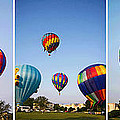 Balloon Festival Panels by Betsy Knapp