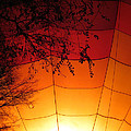Balloon Glow by Laurel Powell