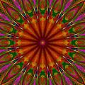 Balloon Kaleidoscope by Suzanne Stout