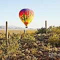 Balloon Ride Over The Desert by Scott Pellegrin