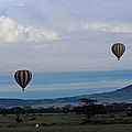 Balloons Above Serengeti. by Tony Murtagh
