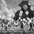 Balloons For Charity by Giorgio Lulli