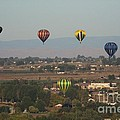 Balloons Over The Valley by Charles Robinson