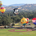 Balloons Over Wine Country by Michael Williams