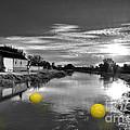 Balls Of Athelney  by Rob Hawkins