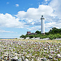 Baltic Sea Lighthouse by Kennerth and Birgitta Kullman