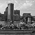 Baltimore Harbor Skyline Panorama Bw by Susan Candelario