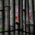 Bamboo Blossom by Charles Majewski