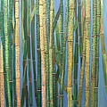 Bamboo by Leslye Miller