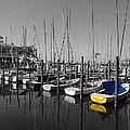 Banana Boat by Michael Thomas