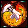 Banana Swirl by Paula Ayers