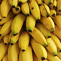 Bananas At The Saturday Market, San by William Sutton