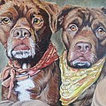Bandana Dogs by Stephanie Dunn