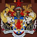 Bank Of Bermuda Coat Of Arms by Marcus Dagan