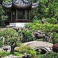 Bansi Garden by John Swartz