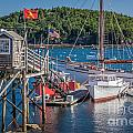 Bar Harbor Boats by Susan Cole Kelly