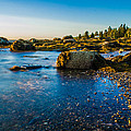 Bar Harbor Coast by Jeff Ortakales