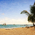 Barbados Beach by Garvin Hunter