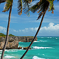Barbados by Brian Jannsen