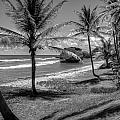 Barbados Bw by William Reek