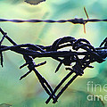 Barbed Wire Love-jealousy 2 by Lesa Fine