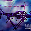 Barbed Wire Love Series The Blues 2 by Lesa Fine