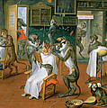 Barbers Shop With Monkeys And Cats Oil On Copper by Abraham Teniers