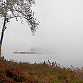 Barge In Fog On Ohio River by R David Johnson