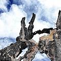 Bark To The Sky by Myda Muckala