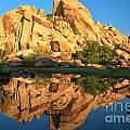 Barker Dam Pond Reflections by Adam Jewell